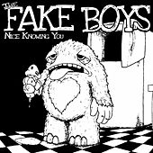 Nice Knowing You by The Fake Boys