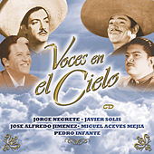 Voces En El Cielo by Various Artists