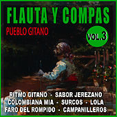 Flauta Y Compas Volumen 3 by Diego Carrasco