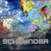 Schwunder by Der Nino Aus Wien