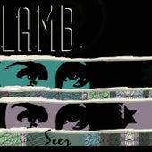 Seer by Lamb