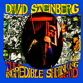 The Incredible Shrinking God by David Steinberg