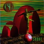 Shake by XYZ