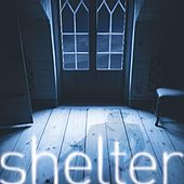 Shelter - Single by David Berkeley
