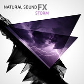 Natural Sound FX: Storm by Various Artists