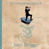 The Traveling Salesman, Pariah, Me by Joey Briggs
