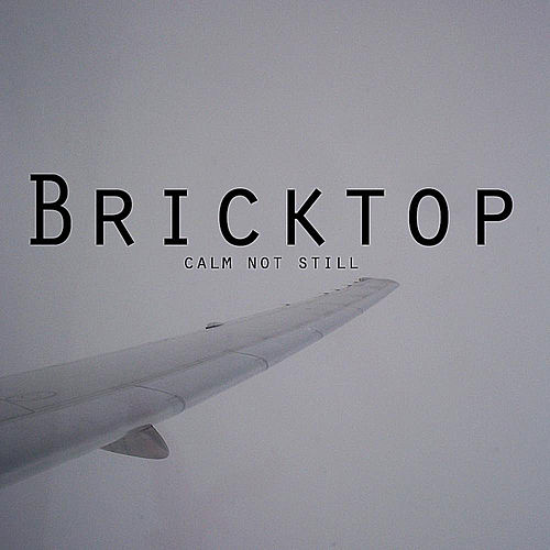 Calm Not Still by Bricktop