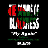 Fly Again (Rap Version) - Single by Sounds of Blackness