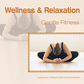 Wellness and Relaxation ~ Gentle Fitness by Various Artists