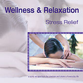 Wellness and Relaxation ~ Stress Relief by Various Artists