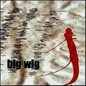 Big Wig by Bigwig