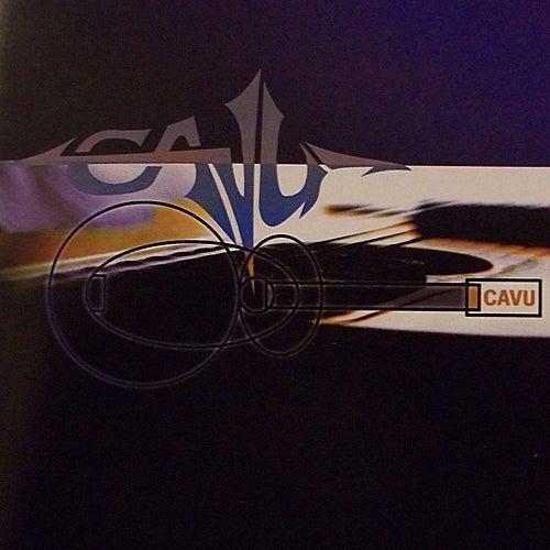 Acoutic Cavu by Cavu