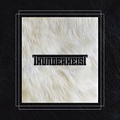 Thunderheist by Thunderheist