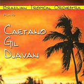 Brazilian Tropical Orchestra Plays Caetano Gil Djavan by Various Artists