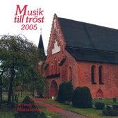 Musik till trost 2005 by Various Artists