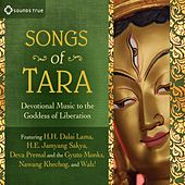 Songs Of Tara by Various Artists