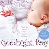 Goodnight, Baby by Joshua Leeds