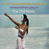 Rainforest/What's Going On (The Chill Mixes) by Paul Hardcastle