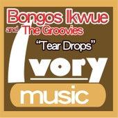 Tear Drops by Bongos Ikwue