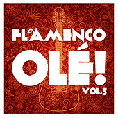 Flamenco Olé! Vol.5 (Remastered Edition) by Various Artists