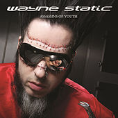 Assassins Of Youth by Wayne Static
