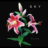 Tiefe by Sky