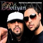 Boliyan (feat. Mehi & Sonia Panesar) - Single by Phat Kat