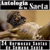 Antología de la Saeta. 24 Hermosas Saetas de Semana Santa by Various Artists