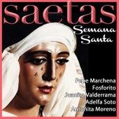 Las Saetas de Semana Santa by Various Artists