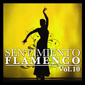 Sentimiento Flamenco Vol.10 by Various Artists