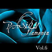 Pasión Flamenca Vol.6 by Various Artists