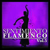 Sentimiento Flamenco Vol.5 by Various Artists