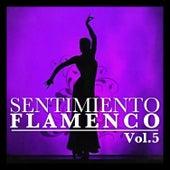 Sentimiento Flamenco Vol.5 by Various Artists