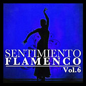 Sentimiento Flamenco Vol.6 by Various Artists
