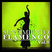 Sentimiento Flamenco Vol.9 by Various Artists