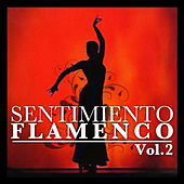 Sentimiento Flamenco Vol.2 by Various Artists