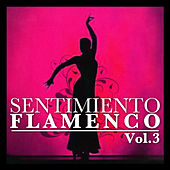Sentimiento Flamenco Vol.3 by Various Artists