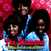 The Ultimate Collection by The Blossoms