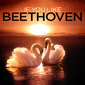 If You Like Beethoven by Various Artists