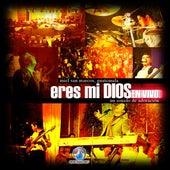 Eres Mi Dios by Miel San Marcos
