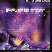 Exaltate Señor by Miel San Marcos