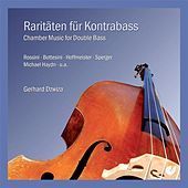Chamber Music for Double Bass by Various Artists