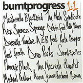 Burnt Progress 1.1 by Various Artists