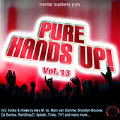 Mental Madness pres. Pure Hands Up! Vol. 13 by Various Artists