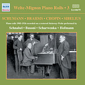 Welte-Mignon Piano Rolls, Vol. 3 (1905-1926) by Various Artists