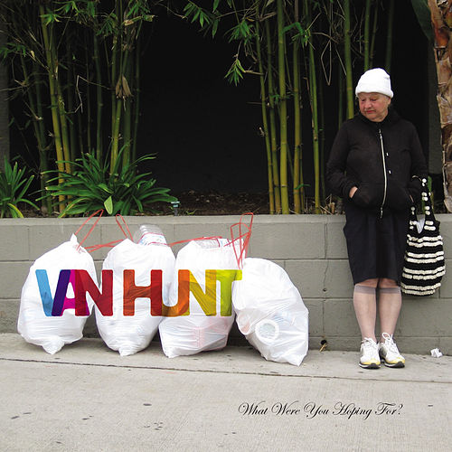 What Were You Hoping For? by Van Hunt
