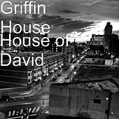House of David by Griffin House