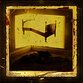 Straylight Run by Straylight Run
