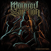 Insurrection by Molotov Solution