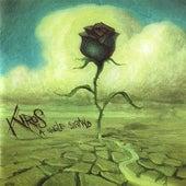 A Single Strand by Kiros